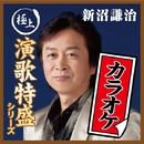 """""""極上演歌特盛カラオケ""""シリーズ 新沼謙治/新沼謙治"""