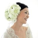 白い花の咲くころ/MIYAKO
