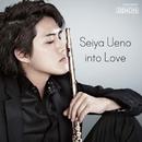 into Love-ポピュラーソング・カヴァーズ/上野星矢