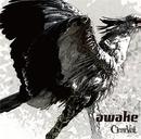 awake(TYPE-B)/ClearVeil