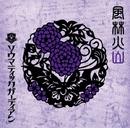 風林火山 山-TYPE/SOMATIC GUARDIAN