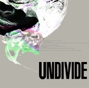 THE CATALYST/UNDIVIDE