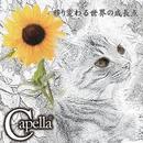 移り変わる世界の成長点/Capella