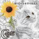 移り変わる世界の成長点 DVD/Capella