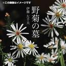 野菊の墓/伊藤 左千夫