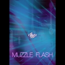 MUZZLE FLASH/AIM