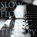 究極のスロー奏法が五感に響くピアノセラピー ~SLOW FLOW CLASSIC THERAPY(スロウフロウクラシックセラピー)/VAGALLY VAKANS