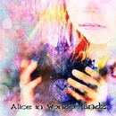 Alice in  Wonder landz. B type/landz.