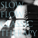 究極のスロー奏法が五感に響くピアノセラピー ~SLOW FLOW CLASSIC THERAPY(スロウフロウクラシックセラピー)(ハイレゾ)/VAGALLY VAKANS