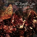 The Butterfly Effect TYPE-B/Misaruka