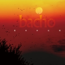 最高新記憶/bacho