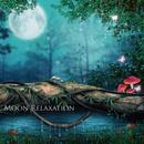 月の引力で神秘的に変化するポリネシアの自然とミニマルアンビエントの魔法 ~ Moon Relaxation(ムーンリラクゼーション)/STALAG