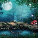 月の引力で神秘的に変化するポリネシアの自然とミニマルアンビエントの魔法 ~ Moon Relaxation(ムーンリラクゼーション) (ハイレゾ)/STALAG