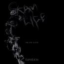 SKAM LIFE TypeA DVD/LIPHLICH