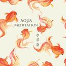 涼やかで神秘的な水琴窟の癒し ~ Aqua Meditation(アクアメディテーション)/STALAG