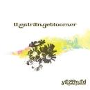 The Strange Bloomer/yazzmad