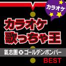 カラオケ歌っちゃ王 氣志團×ゴールデンボンバー BEST/カラオケ歌っちゃ王