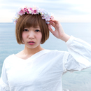 PP-X/京本百加