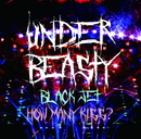 Black Jet  How many kiss TYPE B/アンダービースティー