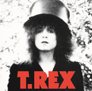 THE SLIDER/T. Rex