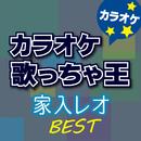 家入 レオ BEST カラオケ/カラオケ歌っちゃ王