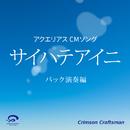 サイハテアイニ アクエリアス CMソング(バック演奏編)/Crimson Craftsman