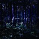 forest(通常盤)/R指定