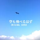 空も飛べるはず ORIGINAL COVER/NIYARI計画