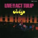 LIVE!! ACT TULIP/TULIP
