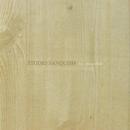 STUDIO VANQUISH / he/susquatch/Various Artists