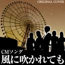風に吹かれても CMソング  ORIGINAL COVER/NIYARI計画
