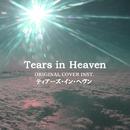 Tears in Heaven ティアーズ・イン・ヘヴン ORIGINAL COVER INST./NIYARI計画