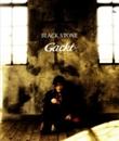 BLACK STONE/GACKT