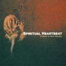 SPIRITUAL HEARTBEAT/V.A
