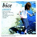 Covers/bice