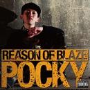 REASON OF BLAZE/POCKY