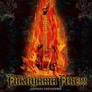 FUKUYAMA FIRE~A Tribute To Nekki Basara~/福山芳樹