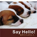 Say Hello! あのこによろしく。 (オリジナル・サウンドトラック)/菅野 よう子