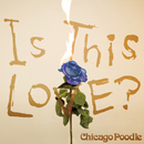 Is This LOVE?/Chicago Poodle