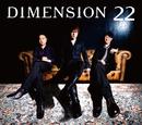22/DIMENSION