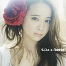 Like a flower<TYPE-A>/塩ノ谷早耶香