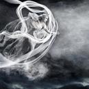 雲は龍に舞い、風は鳳に歌う/陰陽座