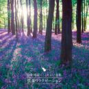 自律神経にここちよい音楽~弦楽リラクゼーション~/Various Artists