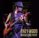 WOOD AND WIRE/ANDY WOOD