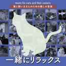 猫と飼い主さんのための癒しの音楽~一緒にリラックス~/Various Artists