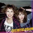 夢のマニュアル/CHERRYBLOSSOM