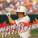 柳沢慎吾のクライマックス甲子園!!/柳沢慎吾