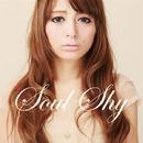 あの頃に戻れない~Can't Forget You~/Soul Shy