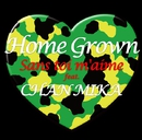 サン・トワ・マミー feat.CHAN MIKA/Home Grown