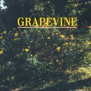 指先/COME ON/GRAPEVINE
